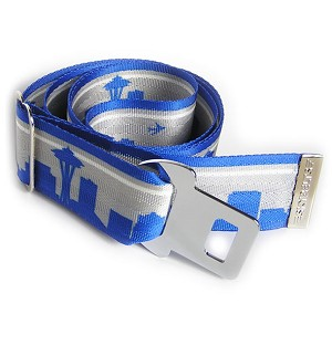 Seattle Skyline Interchangeable Belt